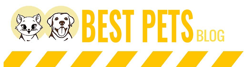 Best Pets -