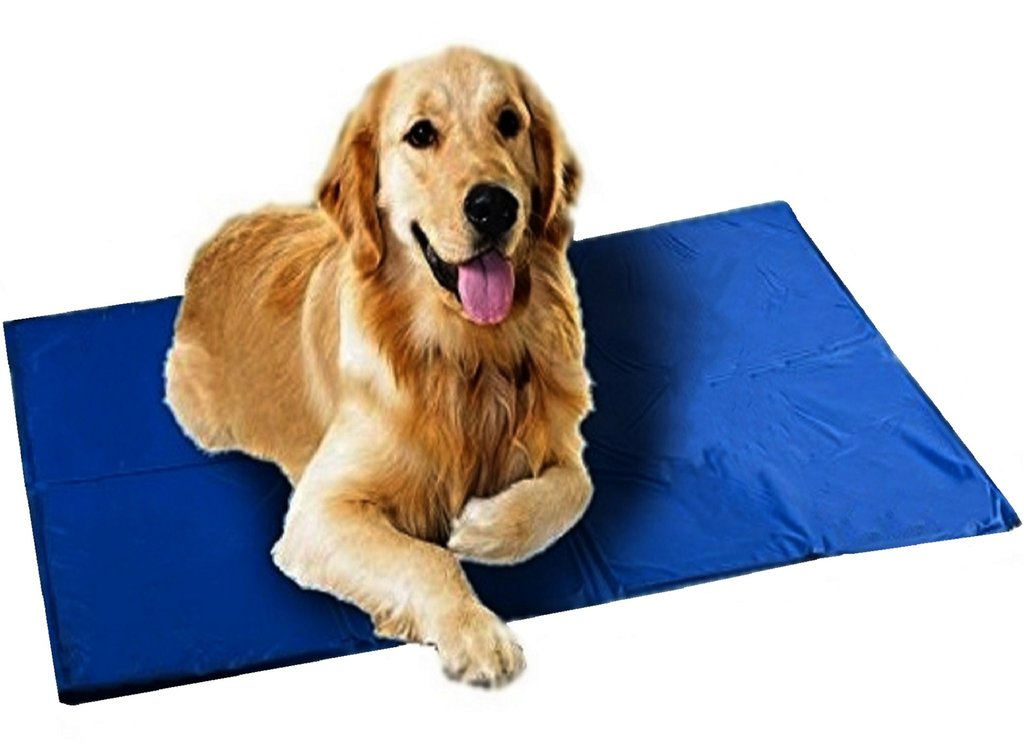 Dog Cooling Pad Reviews 3 Cooling Pad To Help Your Pet