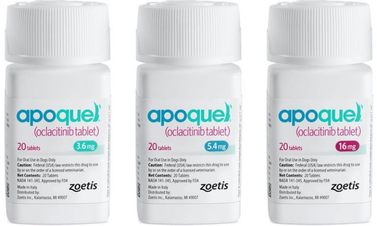 Apoquel Drug: What is the Alternatives?