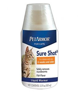 best tapeworm medicine for cats