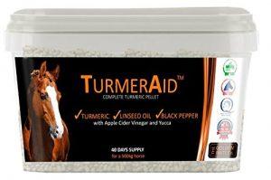 turmeric for horses