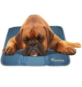 dog cooling pad reviews