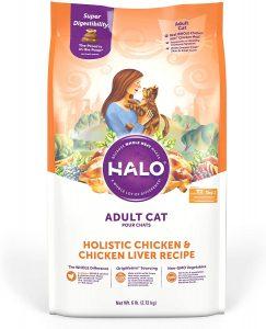 best cat foods to prevent vomiting