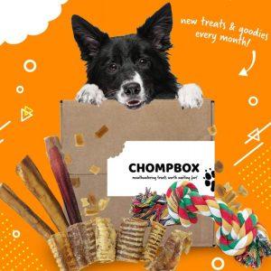 Dog Box Chompbox - Monthly Dog Treats