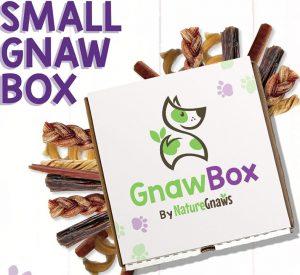Dog Box: Small Dog GnawBox